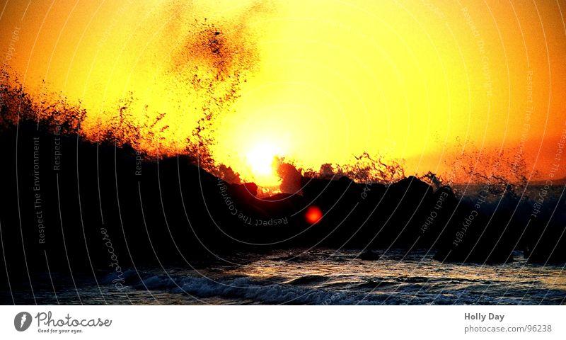 Wellen und Sonnenuntergang Wasser Meer Sommer Strand Ferien & Urlaub & Reisen schwarz orange Küste Felsen Sehnsucht Brandung Los Angeles
