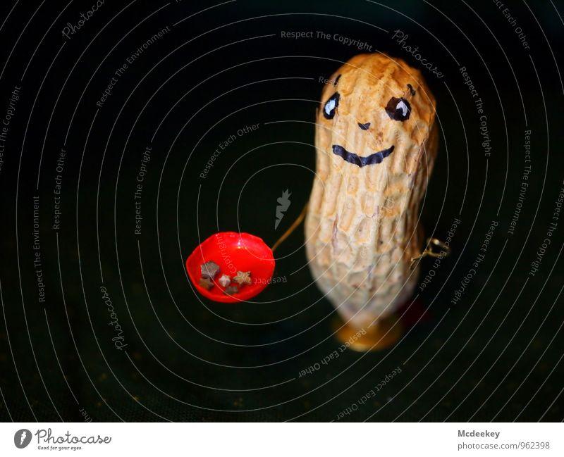 Stern(stein)keks? Lebensmittel Erdnuss Stein Reißzwecken Draht Kunststoff Stoff Metall Stern (Symbol) festhalten Lächeln Blick stehen authentisch Freundlichkeit