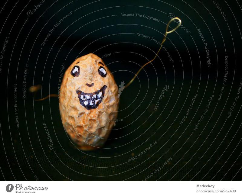 Frohe Adventszeit Lebensmittel Erdnuss androgyn Gesicht Auge Nase Mund Zähne Arme Hand 1 Mensch Draht Reißzwecken Stoff Metall Feste & Feiern Lächeln lachen