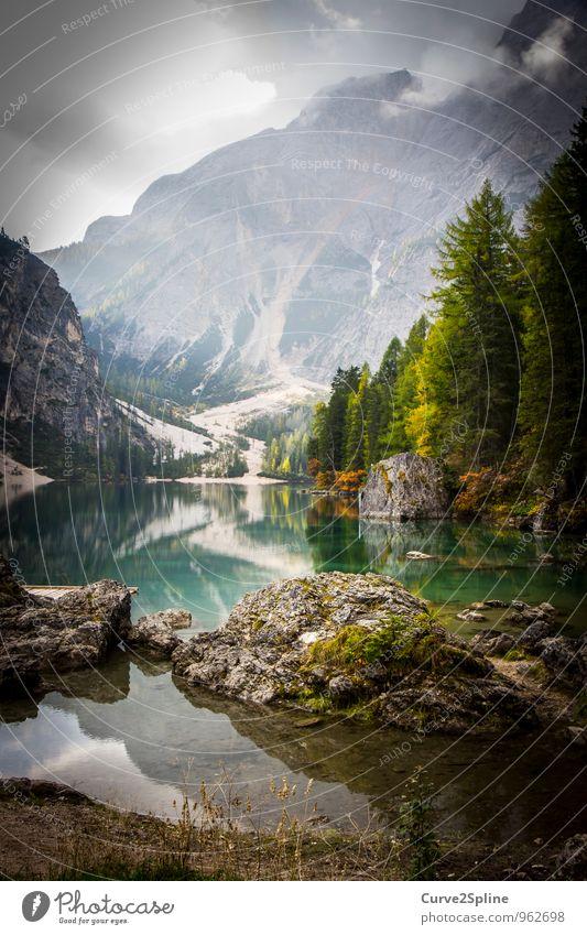 Wildsee Natur Urelemente Wasser Himmel Wolken Sonnenlicht Herbst Baum Sträucher Wildpflanze Wald Felsen Berge u. Gebirge Gipfel Seeufer authentisch Moos