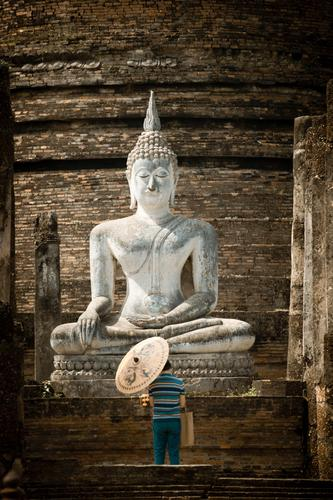 Ruhe Mensch Mann ruhig Erwachsene Wärme Religion & Glaube Asien Vergangenheit Verfall Sonnenschirm Sehenswürdigkeit Ruine Gebet Thailand Tempel Buddha