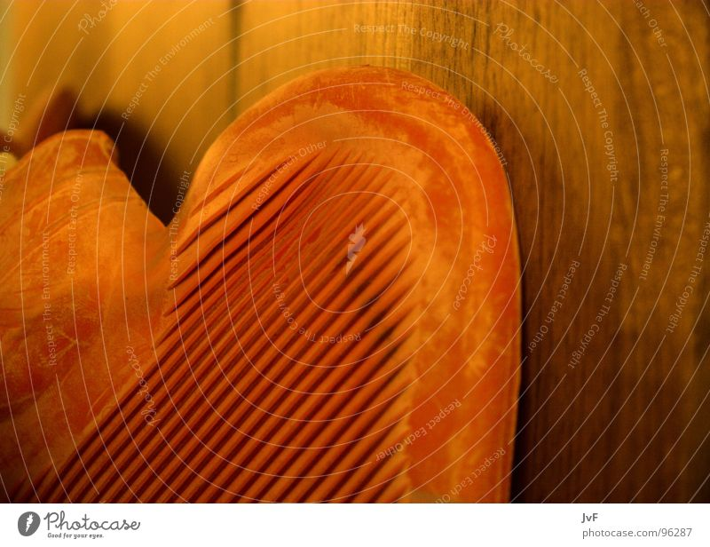 herz verloren rot Holz Glück Wärme Herz Ordnung Physik Riffel Wärmflasche