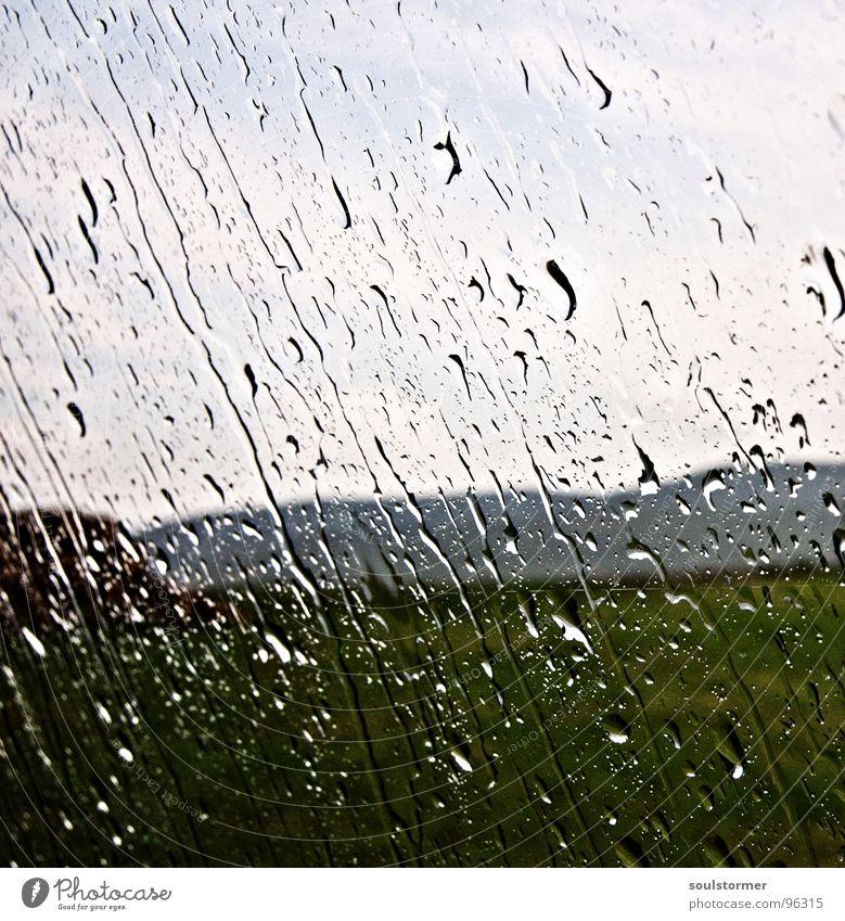 Sturm nass kalt Ekel Wiese Gras Fenster Regen Wolken Regenwolken fließen eng schlechtes Wetter Gewitter Wasser Wassertropfen Berge u. Gebirge PKW Fensterscheibe