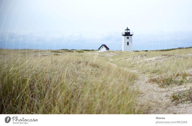 Leuchtturm Umwelt Natur Landschaft Sand Himmel Horizont Herbst Schönes Wetter Küste Strand Meer Atlantik Düne Dünengras Wege & Pfade Provincetown