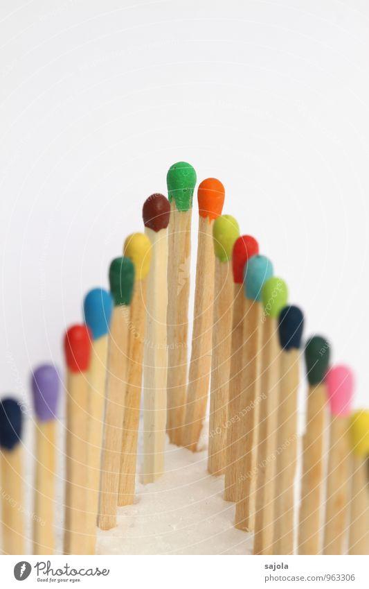 an der spitze Holz stehen Zusammensein mehrfarbig Macht Tatkraft Schutz Solidarität standhaft Gesellschaft (Soziologie) Team Teamwork Wachstum Zusammenhalt