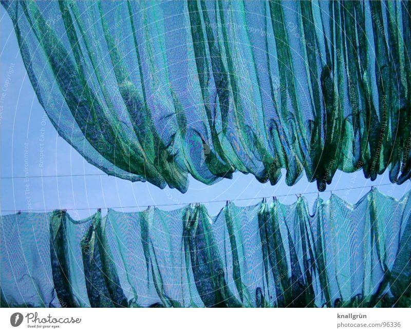 Faltenwurf Himmel grün blau Sommer Netzwerk Stoff Sonnenschirm Nervosität Wetterschutz Abdeckung Sichtschutz