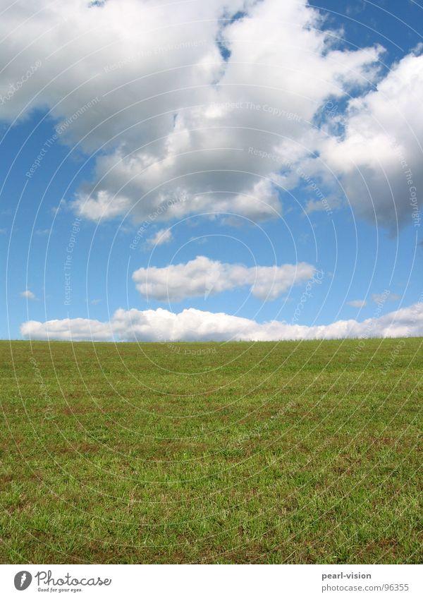 Himmel - Erde Wolken Wiese Außenaufnahme Wolke trifft Wiese Wiese ragt in den Himmel Dem Himmel soo nah! Grün - Weiß - Blau