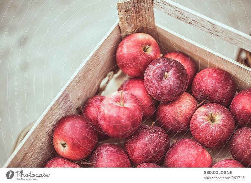 #21112014_0031 | Apfel Natur rot Leben Herbst natürlich Gesundheit Frucht frisch Ernährung rund lecker Ernte Vegetarische Ernährung Kiste saftig