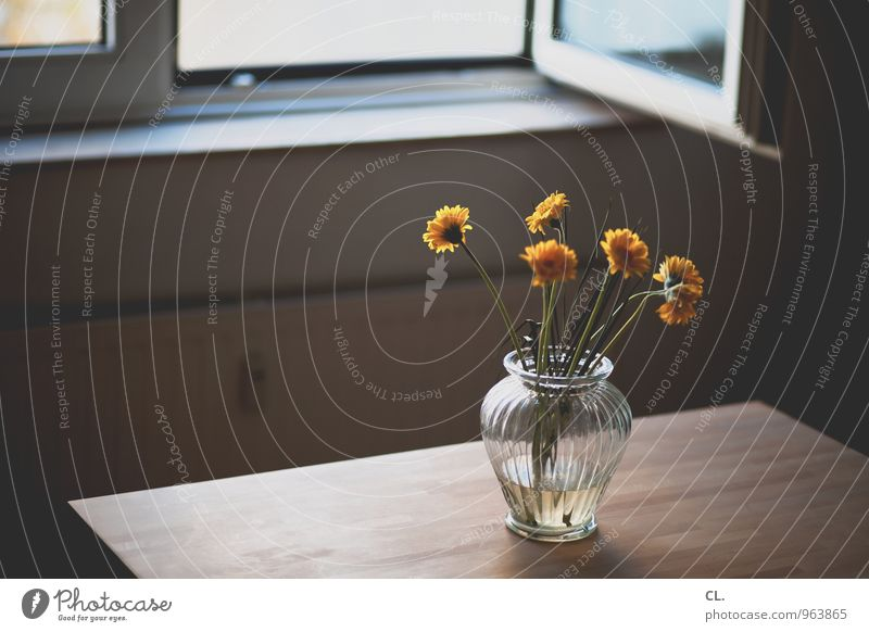 Photocase