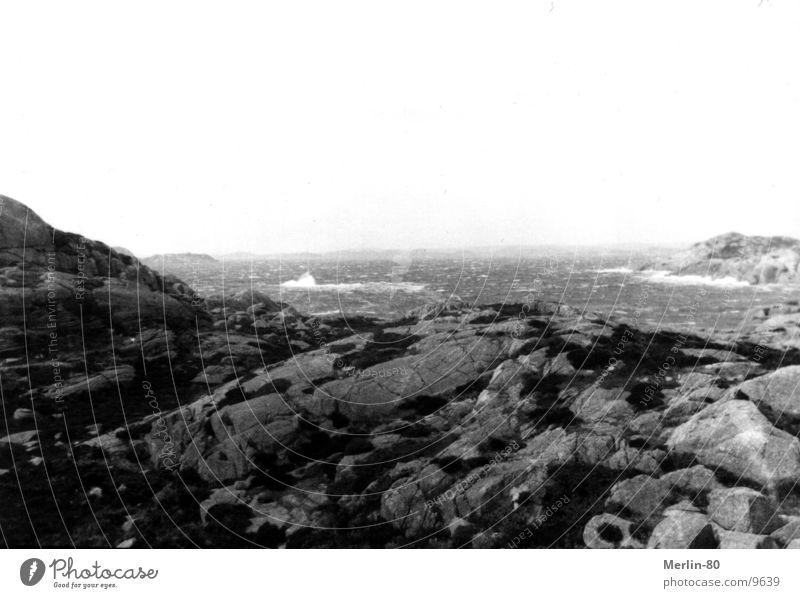 Schweden Brandung Natur schwartz/weiß Felsen Wasser