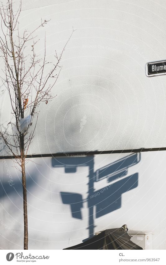 blumenstraße Schönes Wetter Baum Menschenleer Haus Mauer Wand Verkehr Verkehrswege Straßenverkehr Wege & Pfade Straßennamenschild Motorrad Abdeckung