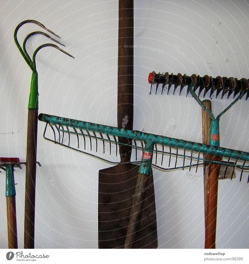 gardeners question time Wand Mauer Zeit Gastronomie Garten Gemüse Ernte Scheune Gartenarbeit Gabel Sonntag Gärtner Schrebergarten Spaten anbauen Harke