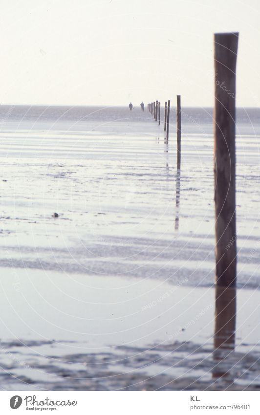 Wat-ten-meer Ferien & Urlaub & Reisen Strand Ferne Holz Sand Küste Horizont Angst wandern Beginn gefährlich bedrohlich Spaziergang Ende Nordsee Spiegel
