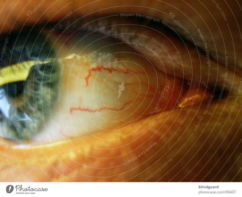 I've Seen It All weiß Gefäße Schrecken glänzend Pupille Wimpern links rechts nah Makroaufnahme Durchblutung rot feucht Nahaufnahme Angst Panik Trauer