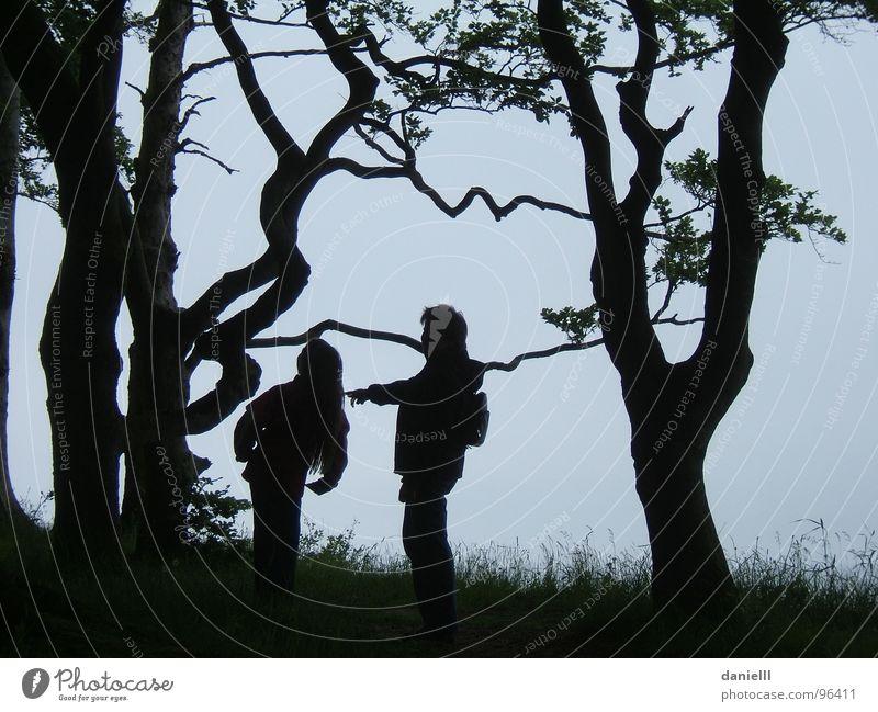 Märchenwald Kind Baum Wald Familie & Verwandtschaft wandern Abenteuer Freizeit & Hobby Vertrauen entdecken Märchen