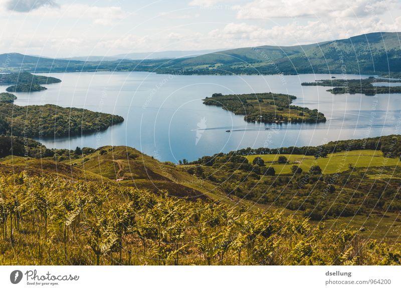 Down by the Loch Himmel Natur Ferien & Urlaub & Reisen blau grün Wasser Erholung Landschaft Wolken Umwelt gelb Wärme Wiese Küste Gesundheit See