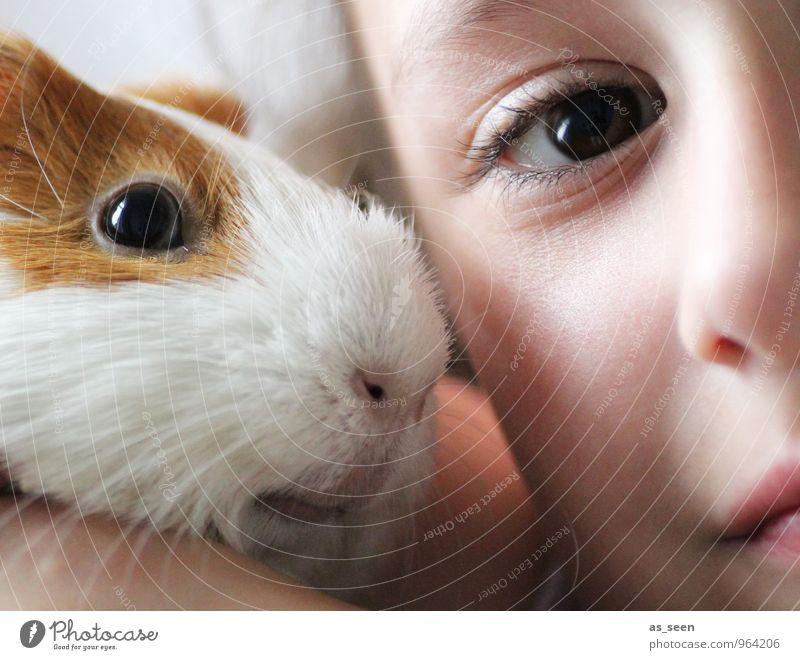 Freunde Mensch Kind weiß Mädchen Tier Gesicht Auge Leben feminin klein braun Freundschaft Zusammensein Kindheit ästhetisch niedlich