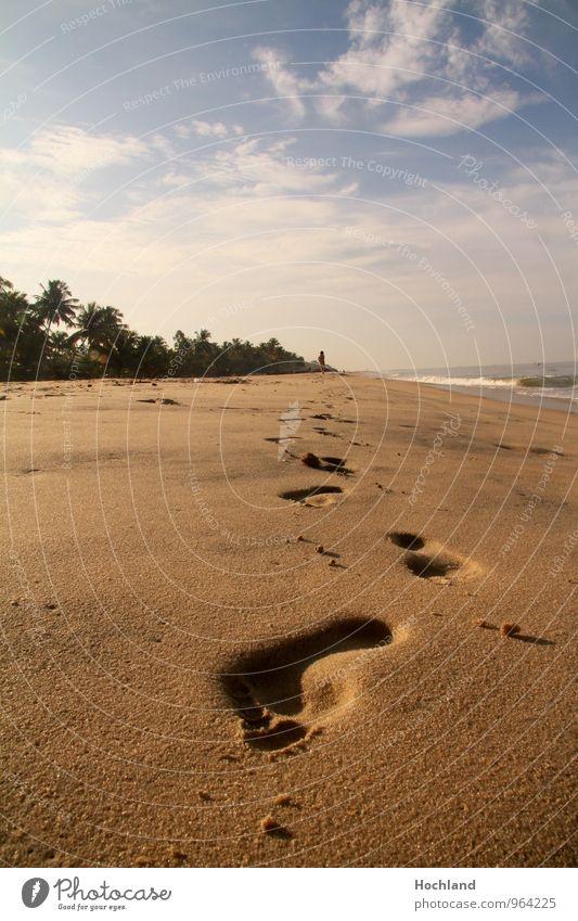 Spuren im Sand am Strand Natur Ferien & Urlaub & Reisen Wasser Einsamkeit Landschaft ruhig Wolken Freude Küste Freiheit Freizeit & Hobby Schönes Wetter
