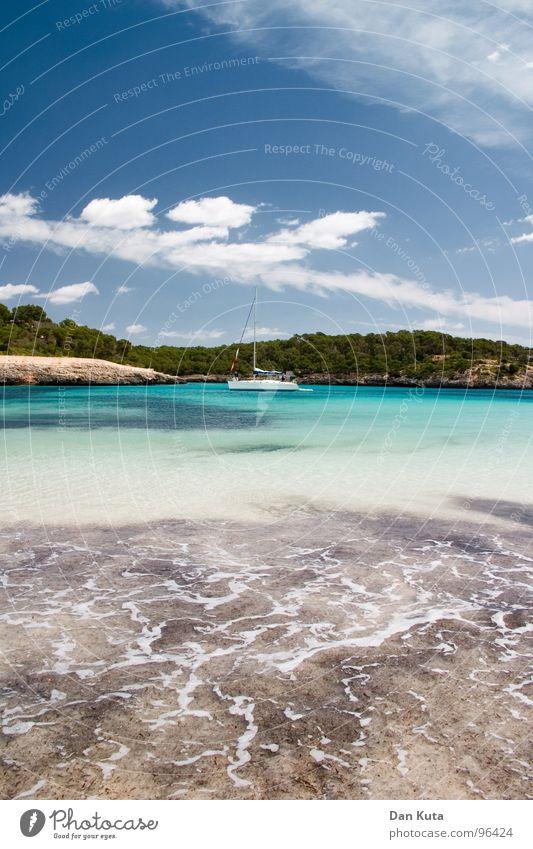 Zurück ins Paradies! Lust Luft beweglich genießen Meer Wolken Physik Ferien & Urlaub & Reisen türkis Wald Baum See Wasserfahrzeug Sportboot Strand tauchen Algen