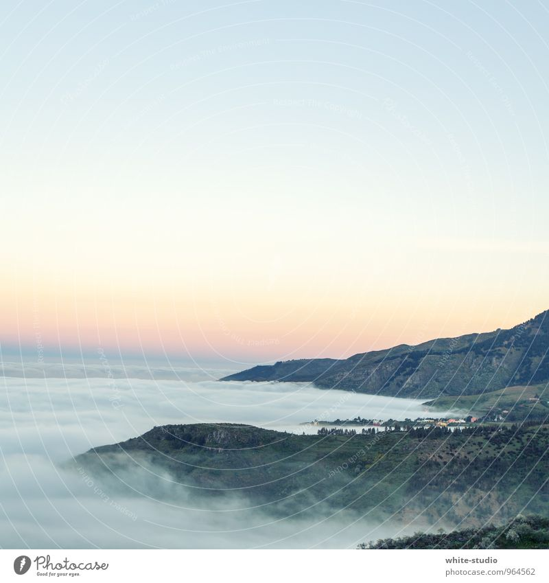 Wolkenwelle Umwelt Natur Landschaft Pflanze Himmel Horizont Sonnenaufgang Sonnenuntergang Sommer Klima Schönes Wetter Unwetter Nebel Wald Hügel Felsen