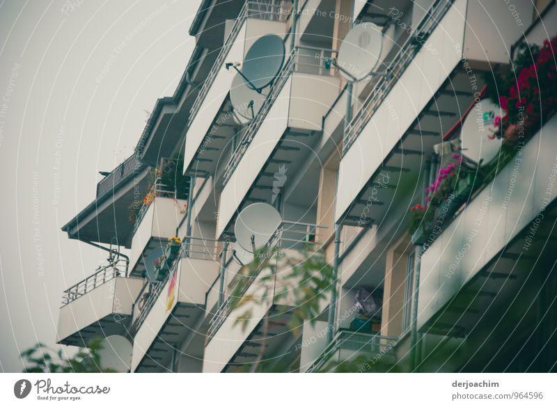 Schüsseln überall schön Herbst grau Berlin Deutschland Wetter Häusliches Leben Design authentisch Hochhaus ästhetisch Beton fantastisch beobachten Industrie