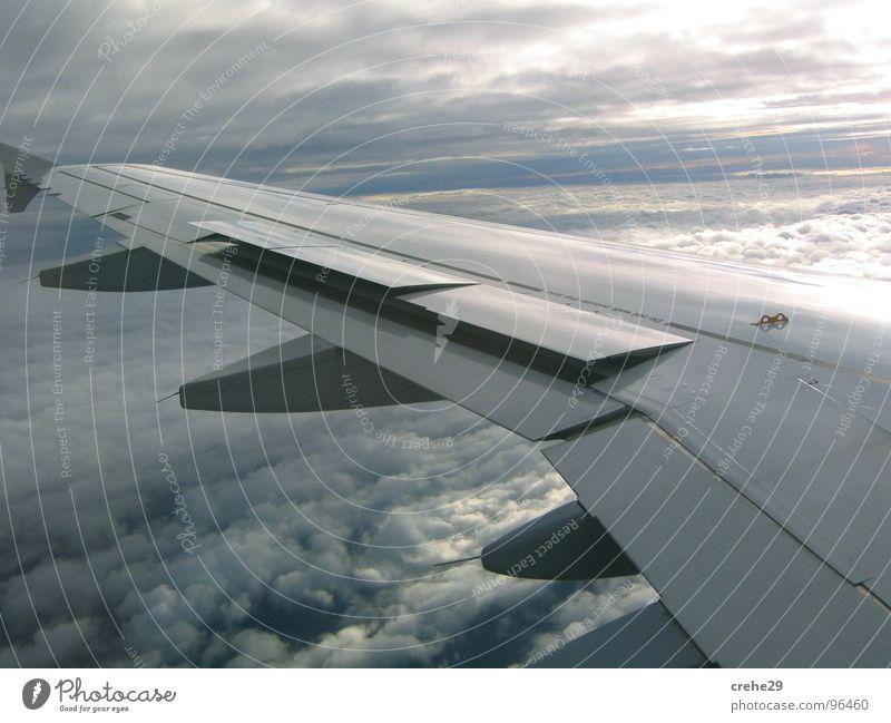 vergessen Ferien & Urlaub & Reisen Flugzeug Flugzeugträger weiß Luftverkehr träger.wolken Himmel entspannnen blau