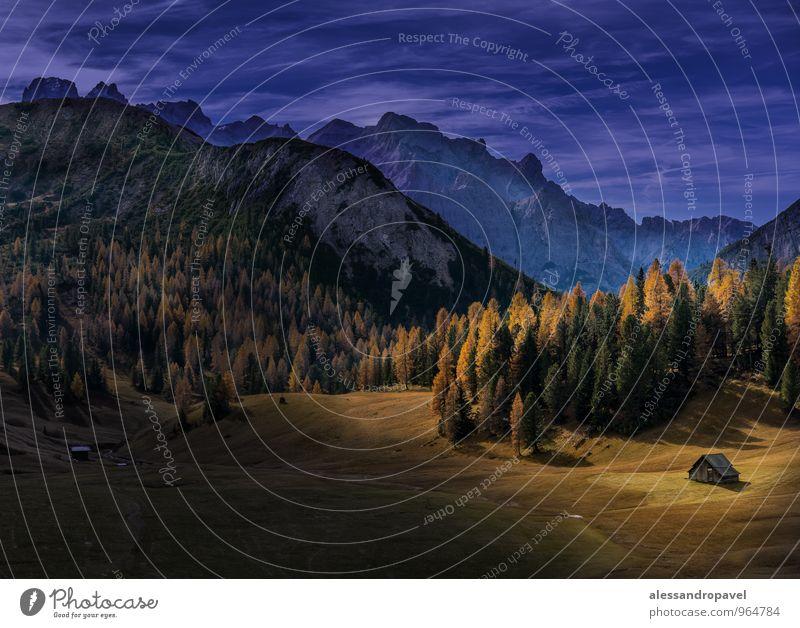 Indian Summer Natur Landschaft Wiese Berge u. Gebirge entdecken Erholung träumen blau gelb gold grün Plätzwiese Farbfoto Außenaufnahme Abend Dämmerung