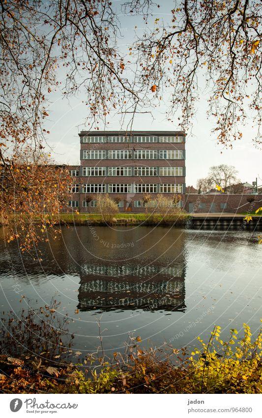 bauhaus. elegant Stil Design Büro Wirtschaft Business Natur Landschaft Wasser Herbst Schönes Wetter Baum Sträucher Flussufer Havel Stadt Haus Bauwerk