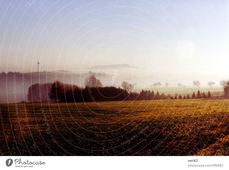 Lausitz im Morgennebel Ausflug Ferne Freiheit Berge u. Gebirge Weite Windkraftanlage Umwelt Natur Landschaft Pflanze Urelemente Erde Luft Wasser