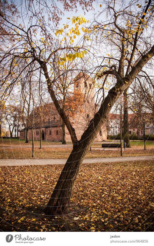 st. nikolai Landschaft Pflanze Herbst Schönes Wetter Baum Blatt Park Kirche Bauwerk Gebäude Architektur Sehenswürdigkeit Wahrzeichen Wege & Pfade Zeichen