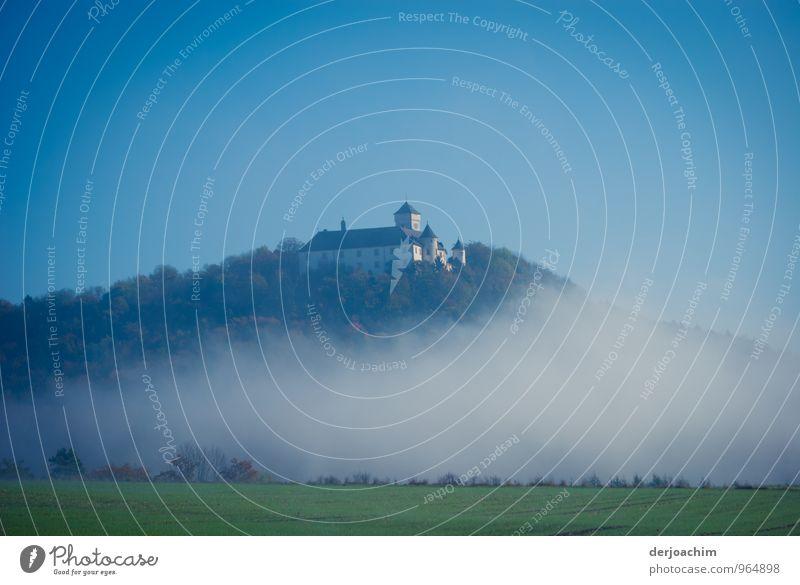 Über den Wolken steht ganz oben die Burg Greifenstein. Im Vordergrund ist eine Wiese. Stil ruhig Freizeit & Hobby Ausflug Burg oder Schloss Umwelt Landschaft