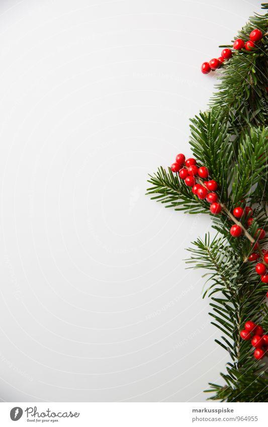 weihnachts decoration stechpalme Weihnachten & Advent Pflanze grün weiß rot Innenarchitektur Stil Lifestyle Feste & Feiern Wohnung Design Häusliches Leben Dekoration & Verzierung elegant Blühend retro