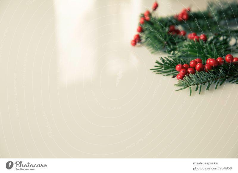 weihnachts decoration stechpalme Weihnachten & Advent Pflanze grün rot Innenarchitektur Stil Lifestyle Feste & Feiern Wohnung Design wild Häusliches Leben