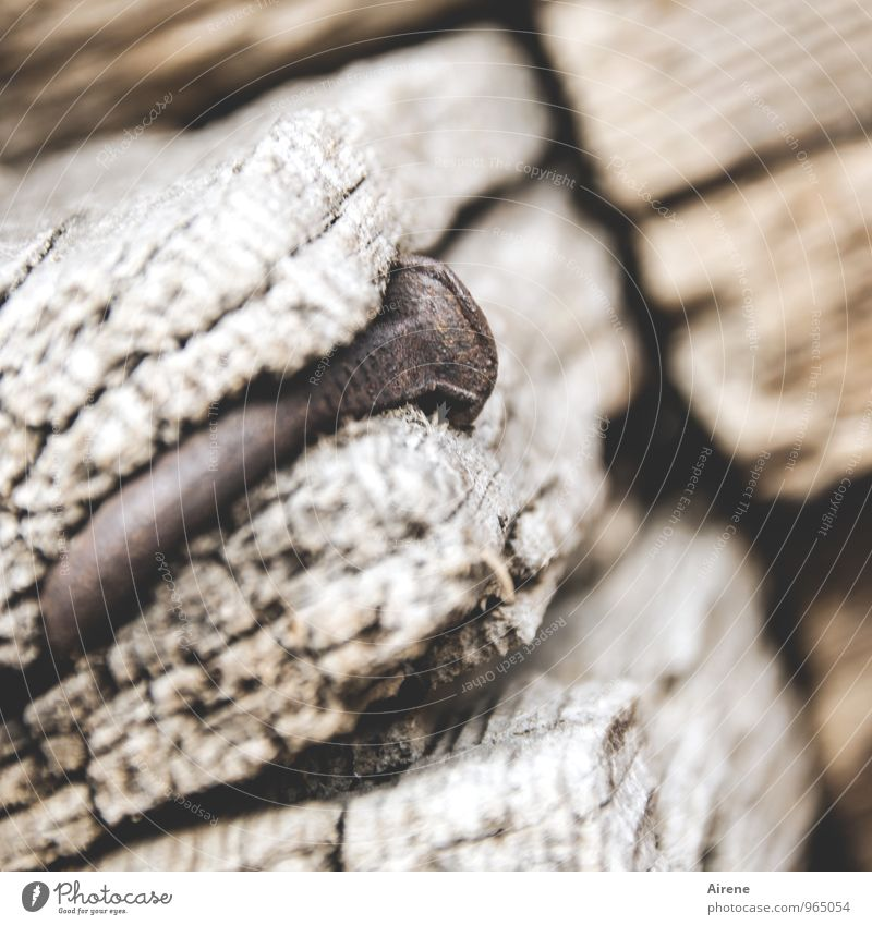 vernagelt Bauwerk Holzhaus Balken Terrasse Nagel Metall Rost alt beweglich Problemlösung Nostalgie Biegung krumm nageln Zusammenhalt Verbindung Ewigkeit