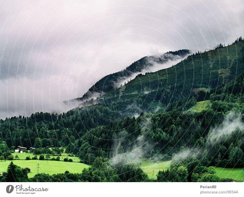 Clouds (Reloaded) Himmel Baum grün Wolken Wiese Berge u. Gebirge grau Landschaft Wetter