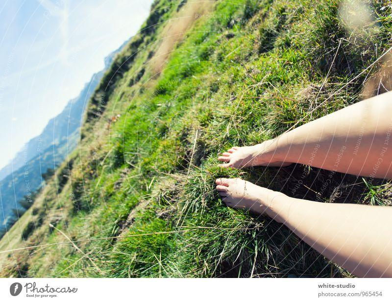 Chillen Mensch feminin Junge Frau Jugendliche Erwachsene Beine 1 18-30 Jahre Natur Landschaft Wolkenloser Himmel Sommer Gras Sträucher Wiese Hügel Alpen