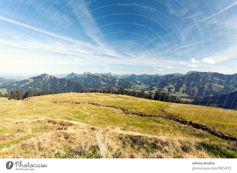 Auf in die Berge! Himmel Natur Pflanze Sommer Landschaft Wald Umwelt Berge u. Gebirge Frühling Wiese Wege & Pfade Sport gehen Wetter wandern Schönes Wetter