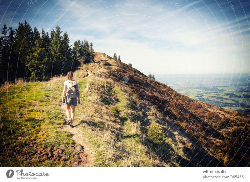 Wanderslust Mensch Junge Frau Jugendliche 18-30 Jahre Erwachsene wandern Außenaufnahme Abenteuer Abenteuerlust Ferien & Urlaub & Reisen Feiertag Rucksackurlaub