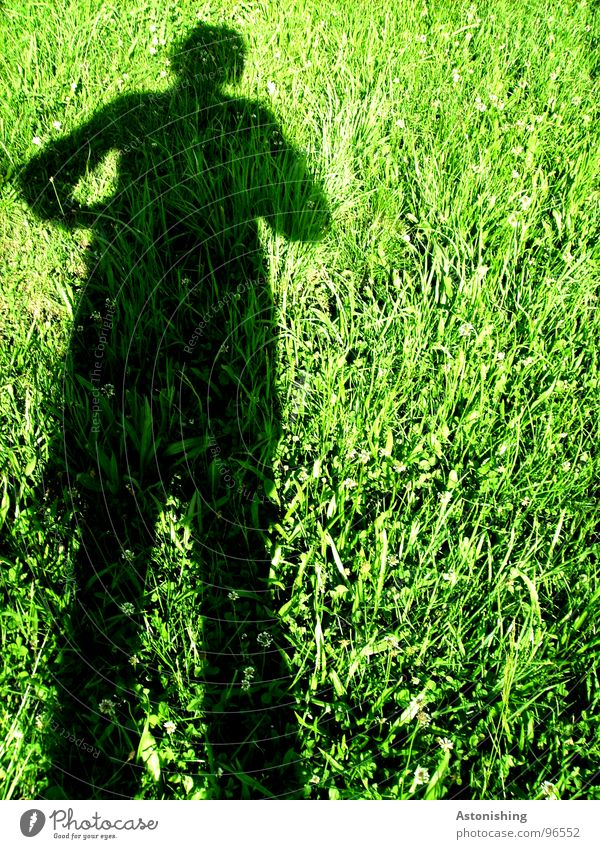 Der Schattenmann 1 Mensch Mann Natur Hand grün Pflanze Sonne Sommer schwarz Erwachsene Wiese Umwelt Landschaft Gras Wärme Beine