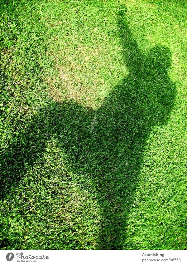 Der Schattenmann 2 Mensch Mann Hand grün Pflanze Sommer schwarz Erwachsene Wiese Umwelt Bewegung Gras Beine Wetter Arme hoch