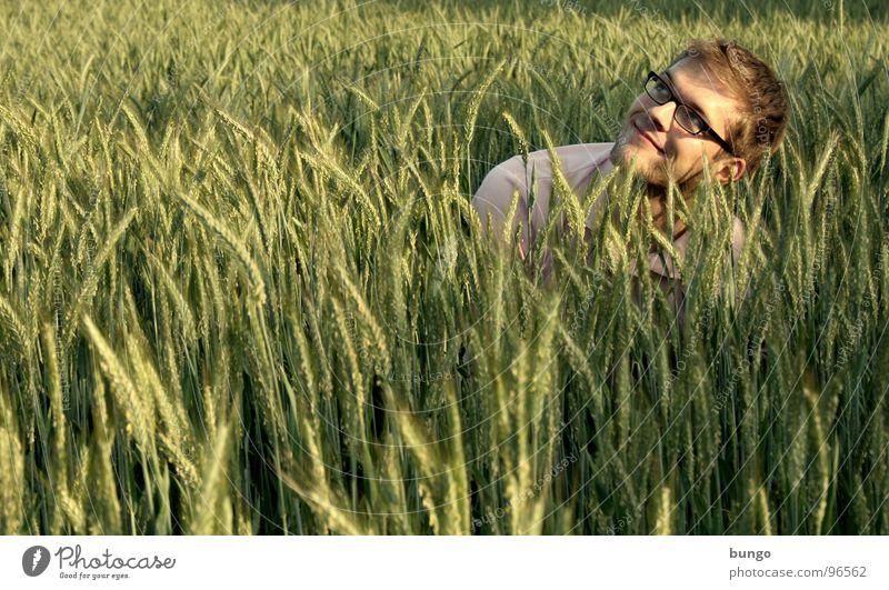 Marc sucht das Getreidefeld Mensch Mann lachen Feld sitzen Suche Brille Getreide Mitte berühren Landwirtschaft Korn verstecken Wohlgefühl Weizen Ähren