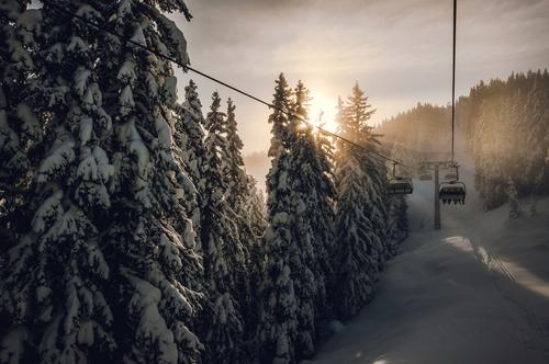 Es geht los! Natur Ferien & Urlaub & Reisen Freude Winter Wald Berge u. Gebirge Schnee Sport Ausflug Schönes Wetter Skifahren Fernweh aufwärts Personenverkehr