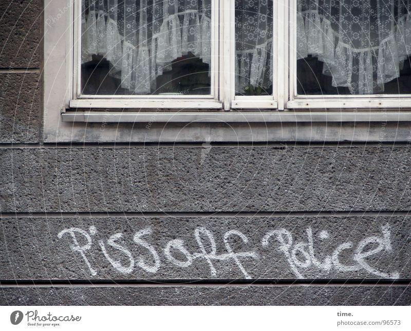 Gebrüll im Idyll weiß Haus Fenster Wand Graffiti grau Stein Kunst Information Wut Dienstleistungsgewerbe Vorhang Rahmen Frustration Versicherung Demonstration