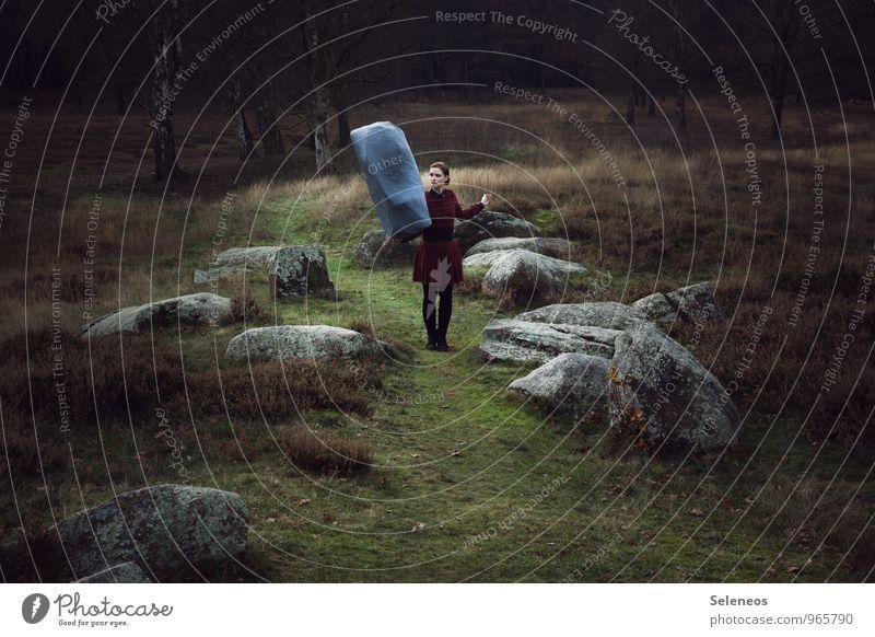 Viktualia Rollgardina Pfefferminz Mensch feminin Frau Erwachsene 1 Umwelt Natur Landschaft Herbst Park Wiese Felsen Moor Kleid Stein stark Kraft Willensstärke