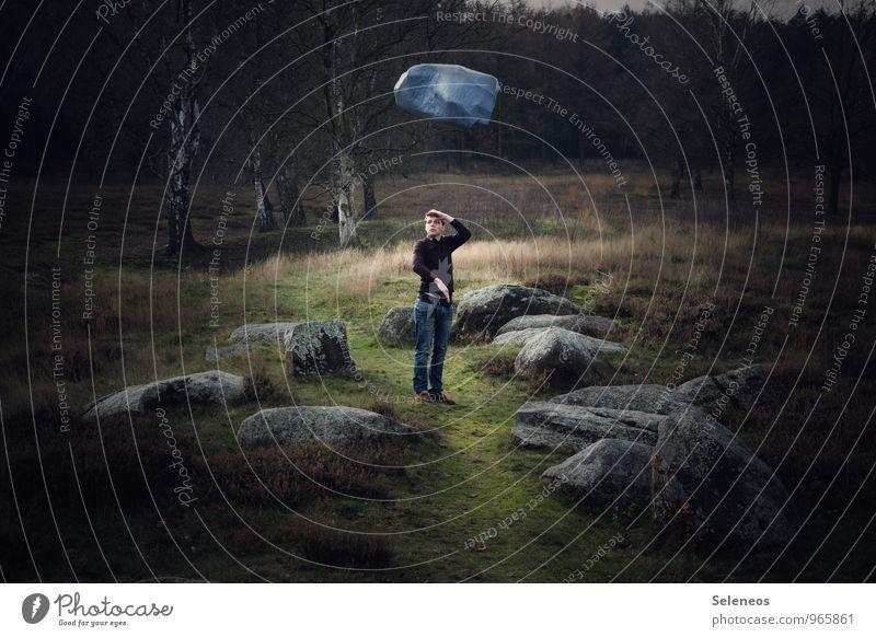 Weitblick Mensch maskulin Mann Erwachsene 1 18-30 Jahre Jugendliche Umwelt Natur Landschaft Herbst Gras Sträucher Moos Felsen Wege & Pfade Stein beobachten