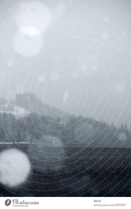 Schnee überm See Himmel Ferien & Urlaub & Reisen Einsamkeit Winter Berge u. Gebirge Umwelt Traurigkeit Feste & Feiern Stimmung Schneefall Eis Tourismus Nebel