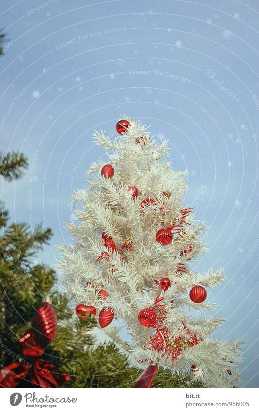 weisse Weihnacht Weihnachten & Advent Feste & Feiern Schneefall Dekoration & Verzierung Kitsch Weihnachtsbaum Vorfreude Christbaumkugel Weihnachtsdekoration