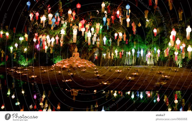 Lichterfest Dekoration & Verzierung Lampion mehrfarbig exotisch Gelassenheit Glück Religion & Glaube Tradition Buddhismus Kerzenschein Thailand Asien