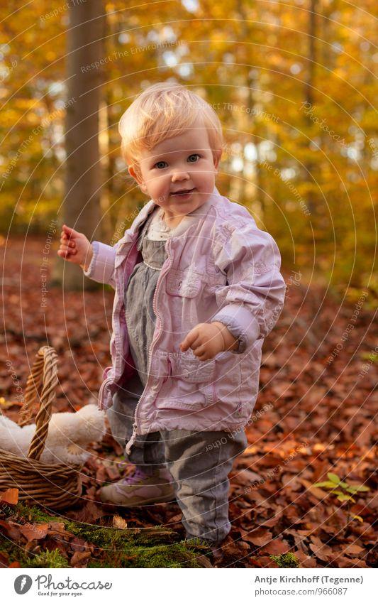 Frechdachs Mensch Kind Natur Baum Blatt Landschaft Mädchen Wald gelb Herbst feminin klein Glück lachen braun Familie & Verwandtschaft