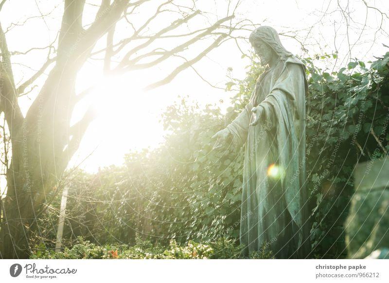 Am Anfang war das Licht maskulin Kunst Skulptur Sonnenlicht Baum Park Stein Zeichen leuchten hell Kraft trösten Hoffnung Glaube Religion & Glaube Tod Trauer